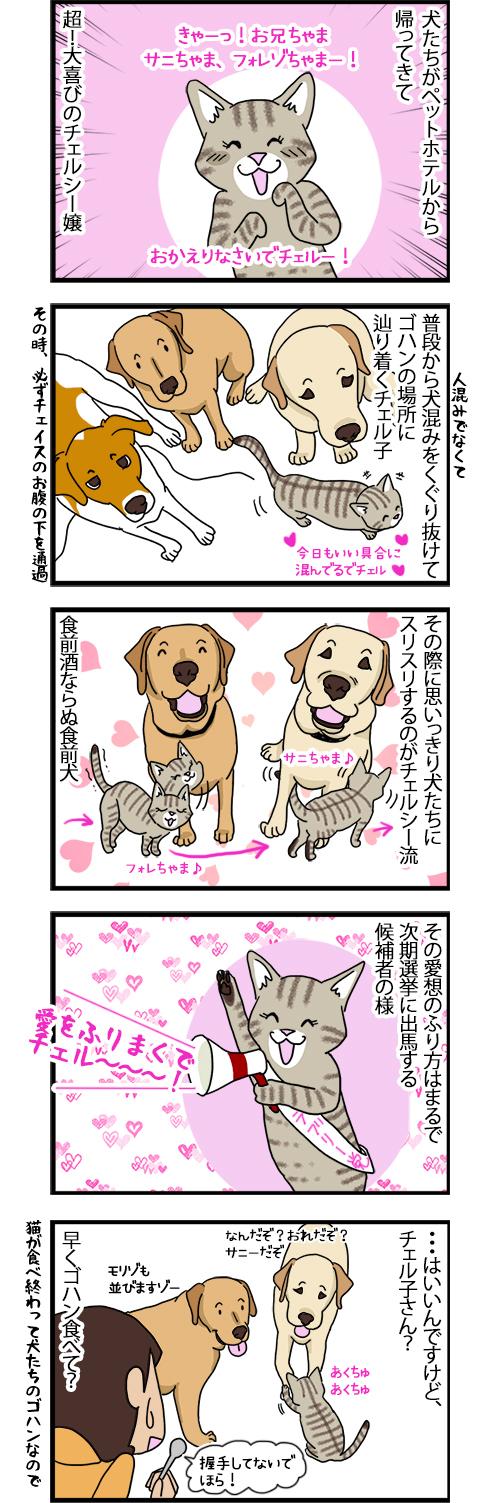 25092020_dogcomic.jpg