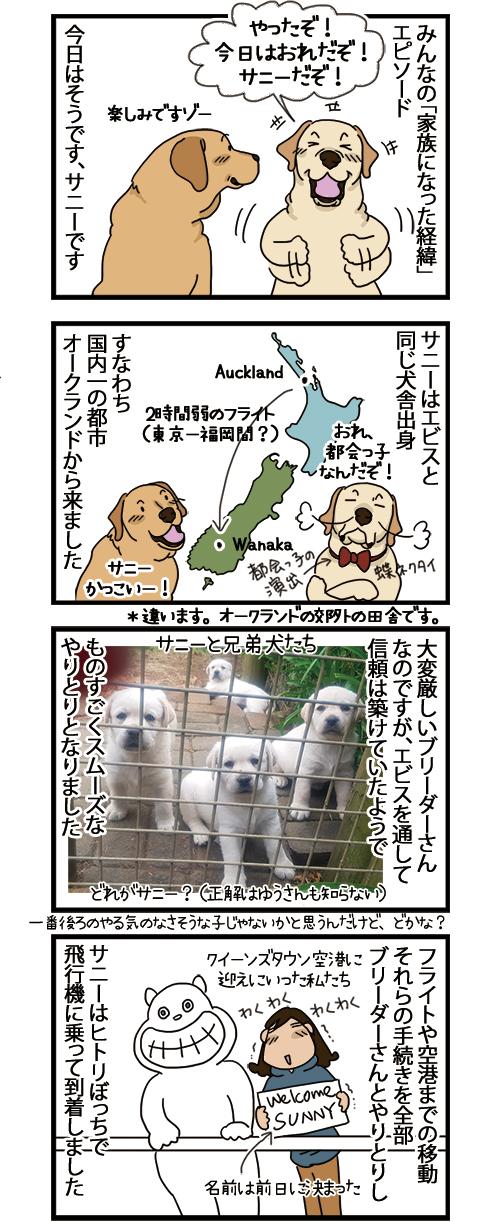 03062021_dogcomic_1.jpg