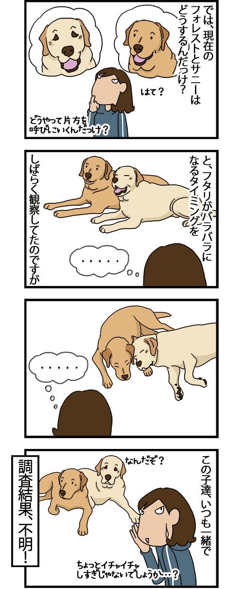10052021_dogcomic.jpg