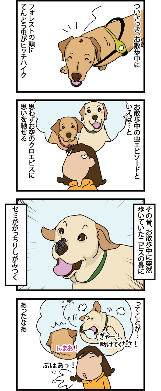 12042021_dogcomic_mini1.jpg