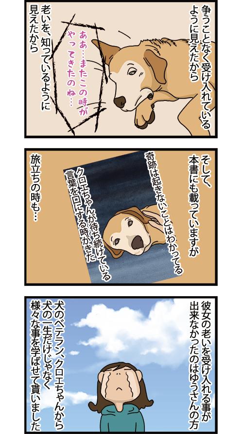 16042021_dogcomic2.jpg