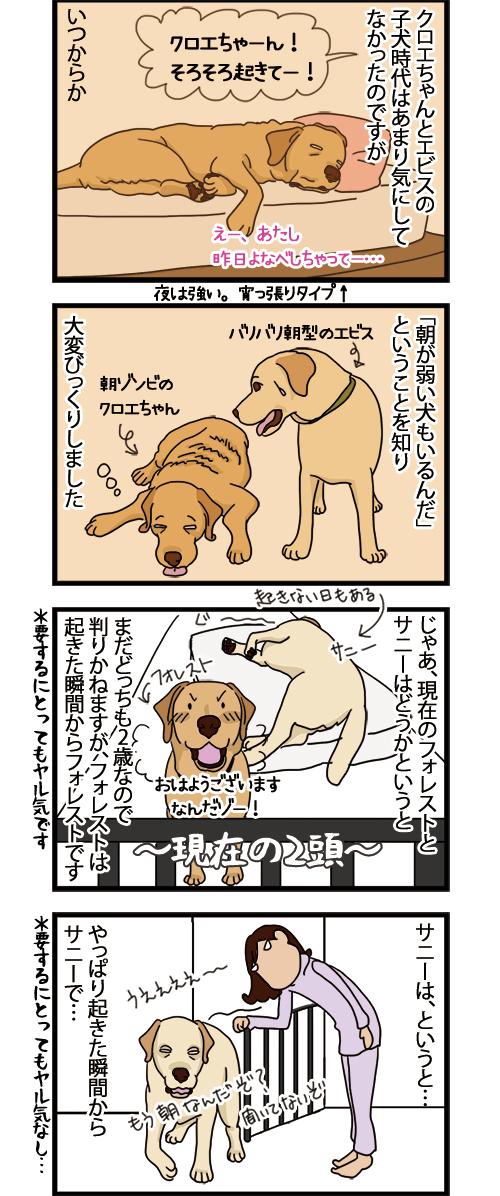 20052021_dogcomic_=1.jpg
