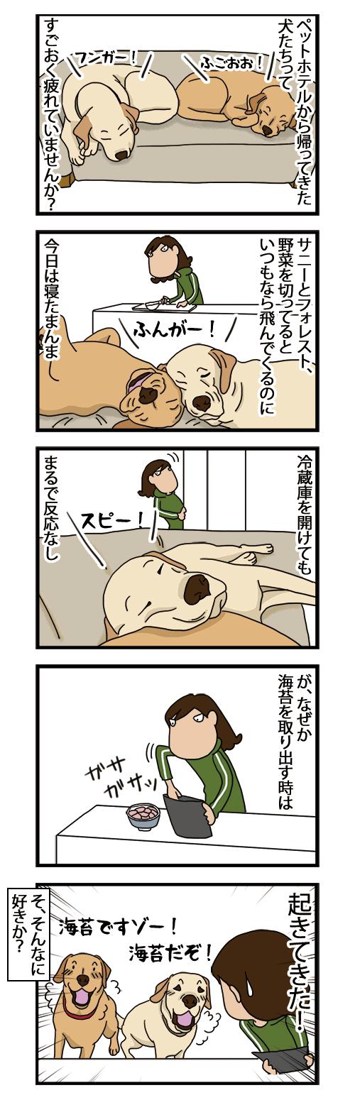 22022021_dogcomic.jpg