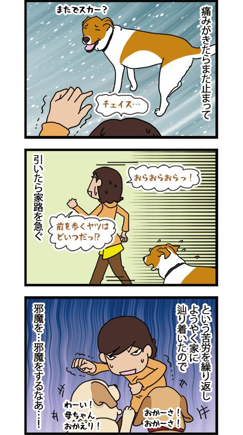 28012021_dogcomic_2.jpg