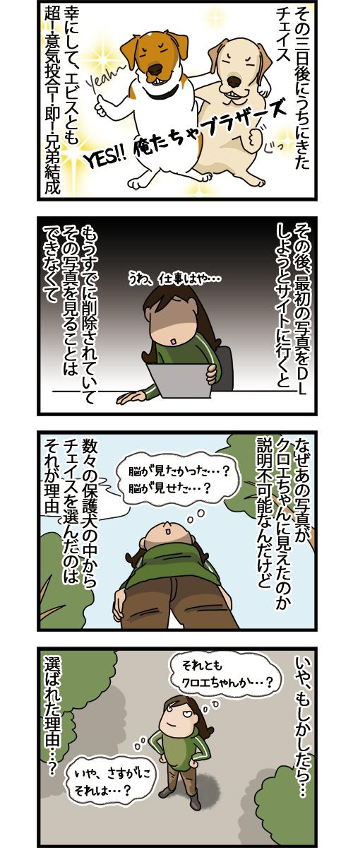 31052021_dogcomic_2.jpg