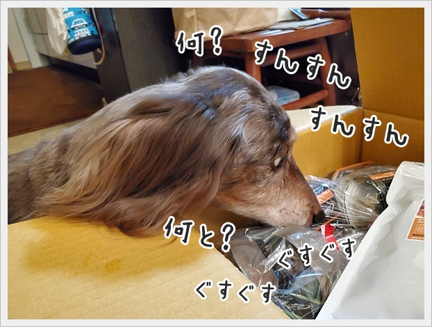 fc2_2021-03-4_04.jpg