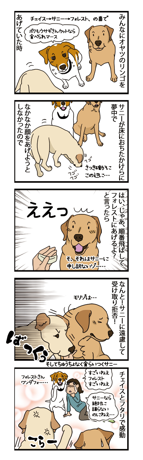 10082021_dogcomic.jpg