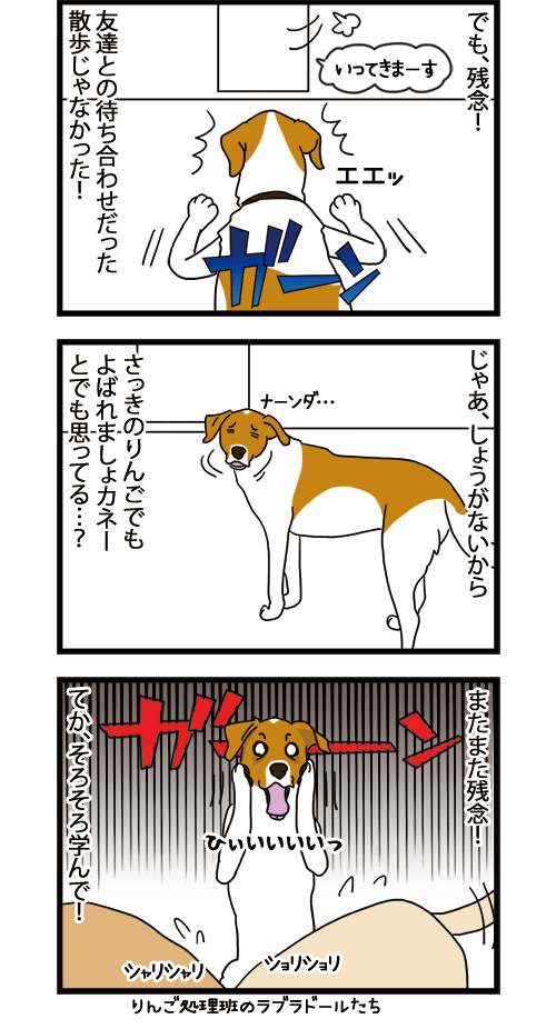 15062021_dogcomic_2.jpg