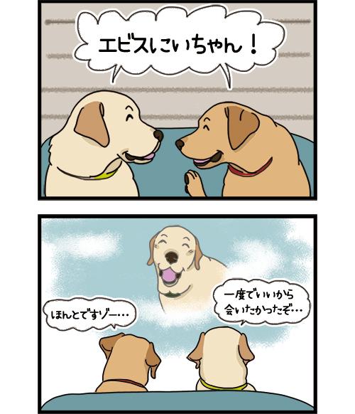 17072021_dogcomic_2.jpg