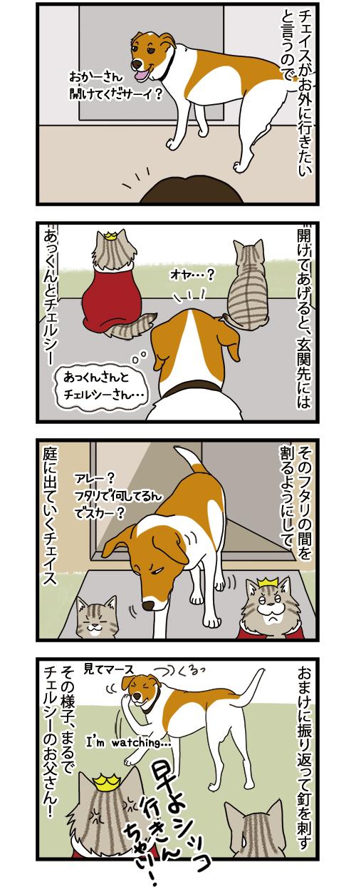 25082021_dogcomic_1.jpg