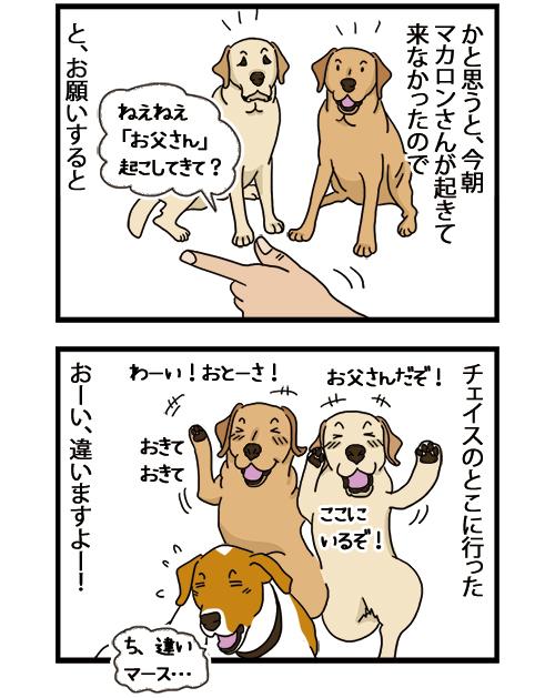 25082021_dogcomic_2.jpg