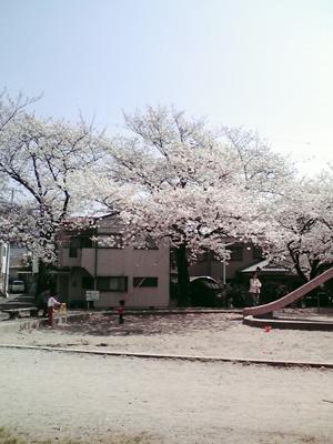 20110411
