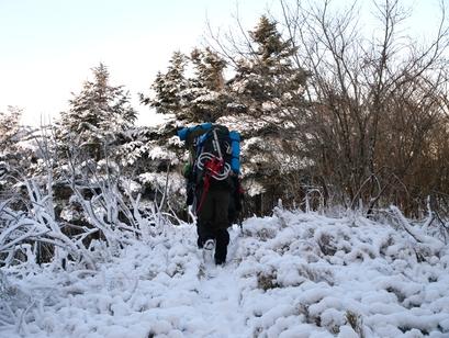 剣山へもう一度 (4) ~雪がない尾根~