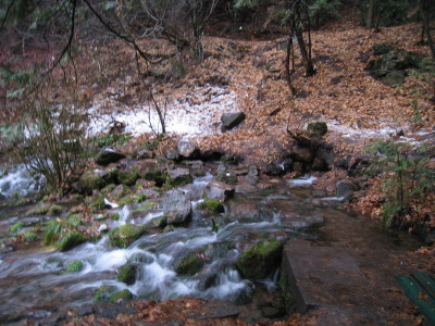 Headwaters 121209-4