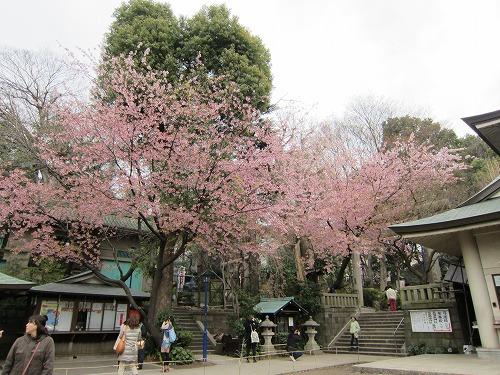 上野公園 2