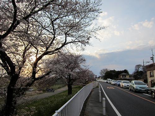 多摩川 10