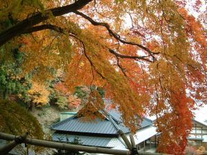 matushima+052_convert_20110309123404.jpg