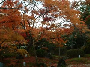 matushima+055_convert_20110309123447.jpg