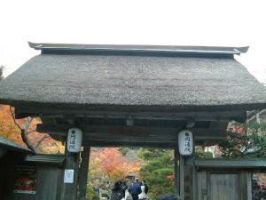 matushima+068_convert_20110309123841.jpg