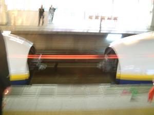 matushima+078_convert_20110309124228.jpg