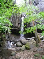 Hedge Creek 060210-40001