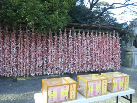 寒川神社 3