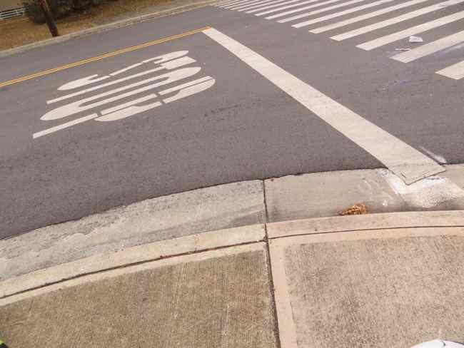 ハワイ路上試験運転免許