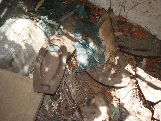 сгнившие вещи, разбитое стекло