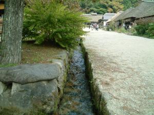 fukushima+031_convert_20101019152746.jpg