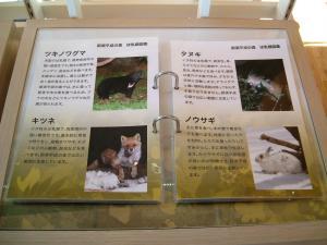 nasu2011+008_convert_20111028132530.jpg