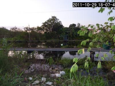 20111029_180740_1.jpg