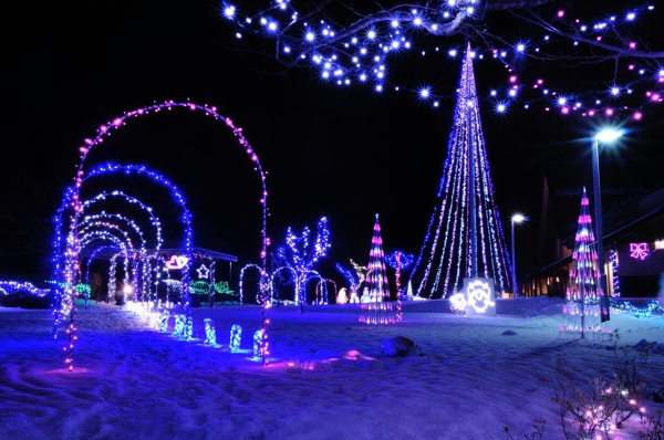 Gonohe Town's Illumination