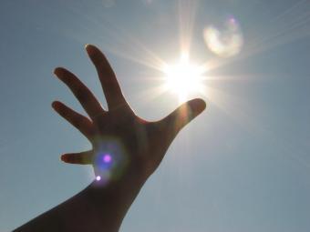三十路男の365日 - 手のひらを太陽に