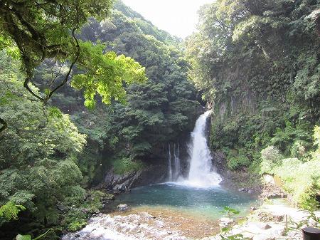 河津七滝 14
