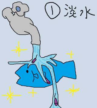 管理栄養士ゆいのブログ☆こころ鍼灸整骨院☆ 腸炎ビブリオの ...