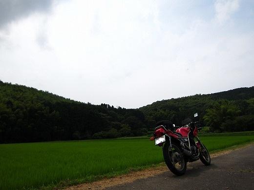 県道80号線 2
