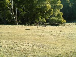 sydney2012-2+091_convert_20120926153954.jpg