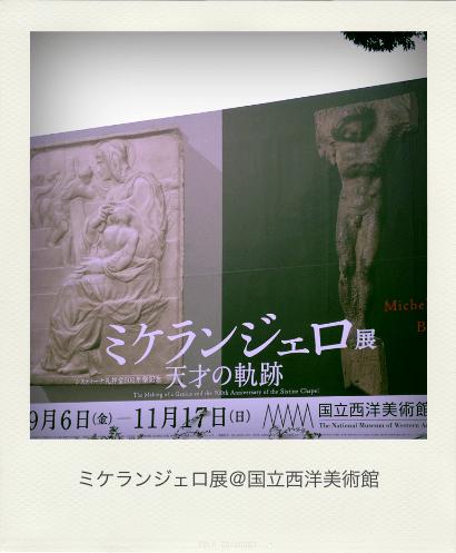 Michelangelo_ex_Pola