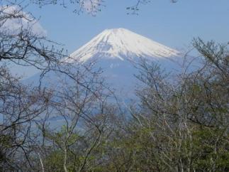 あずさ号から富士山 に対する画像結果