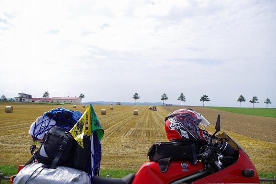メルヘンの丘 2