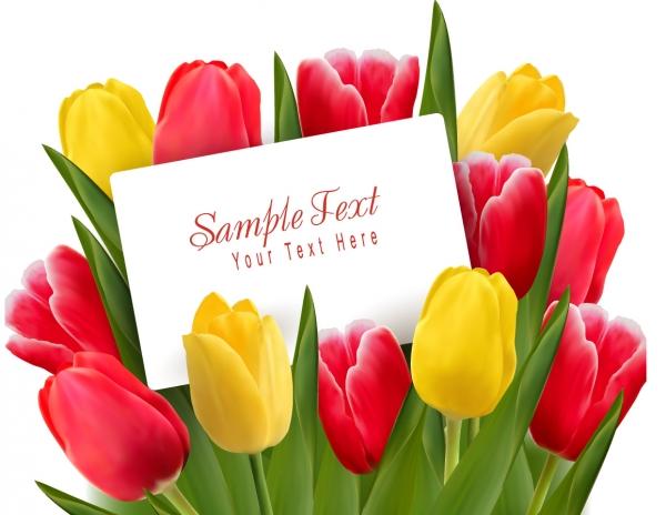 カードを添えたチューリップの花束 Beautiful tulips flowers background