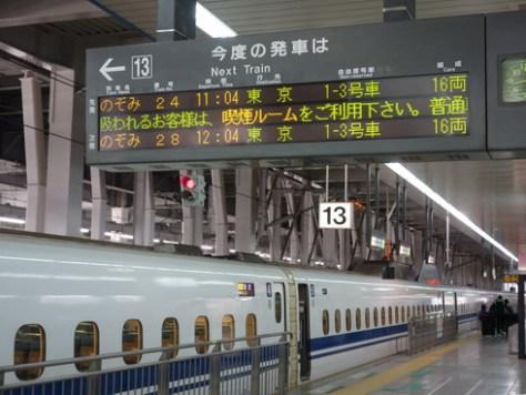 DSC05089.jpg
