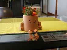 岡山市のサンライズボディケアで治療に一役かってます