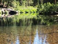 web 2013-07-11 mccloud river (3)