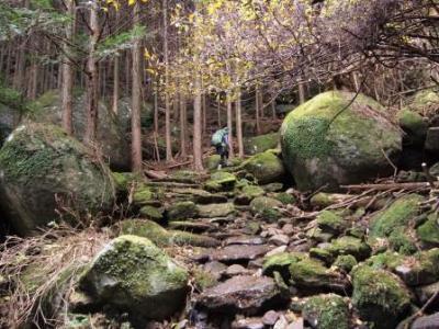 web熊野古道伊勢路2015-12-13 (52)