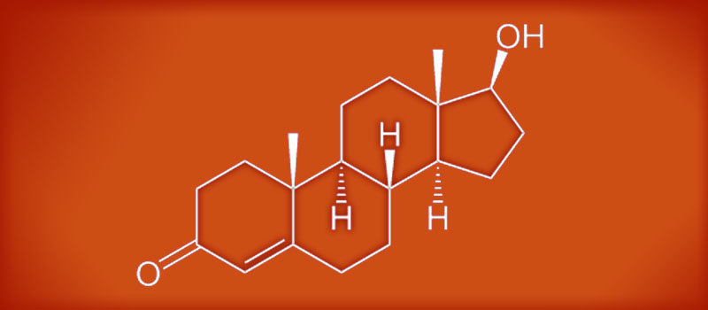 testostérone pour prendre du muscle
