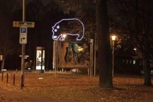 Nilpferd Zoo (2)