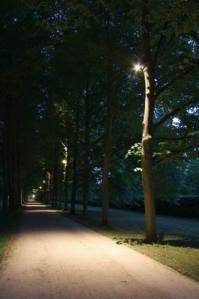 Allee_2979 (11)