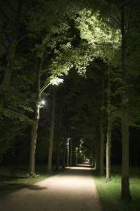 Allee_2979 (12)