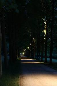 Allee_2979 (6)